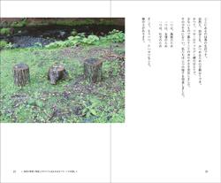 14Ni_020_021s.jpg