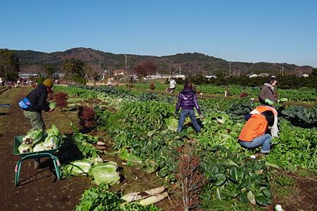 キッチン収穫祭201112_10.jpg