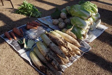 キッチン収穫祭201112_12.jpg