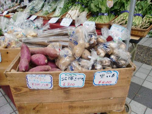 小坂農園野菜.jpg